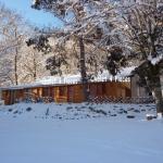 10: chalet pin sous la neige.